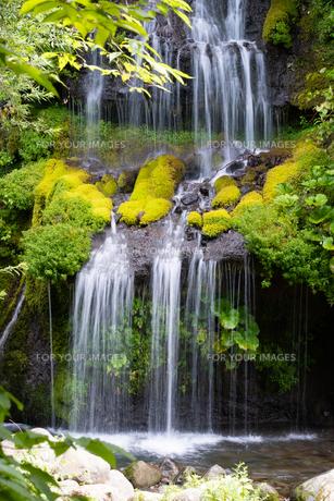 夏の滝の写真素材 [FYI01199963]