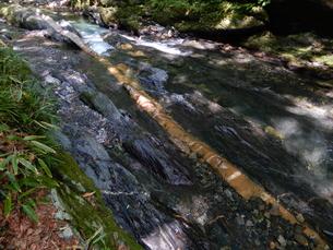 国天然記念物 蛇石(長野県辰野町 横川)の写真素材 [FYI01199998]