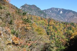 紅葉の鶏冠山の写真素材 [FYI01200033]