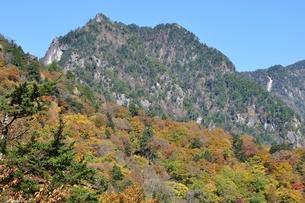 紅葉の鶏冠山の写真素材 [FYI01200034]