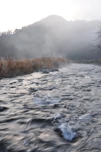 川霧の写真素材 [FYI01200051]