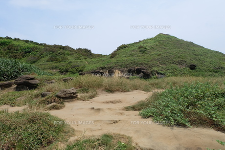 台湾 奇岩 深澳岬角(象鼻岩景觀區)の写真素材 [FYI01200206]