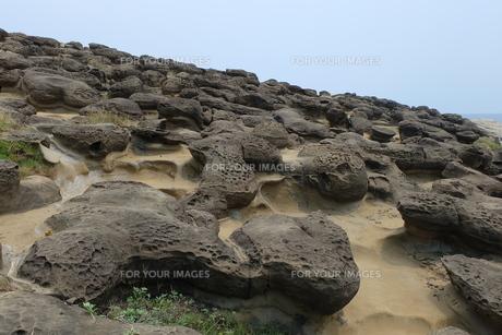 台湾 奇岩 深澳岬角(象鼻岩景觀區)の写真素材 [FYI01200220]