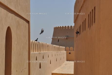 オマーン 城壁の写真素材 [FYI01200282]