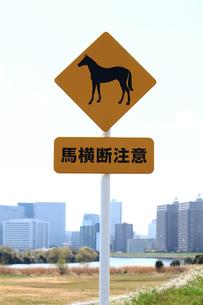 馬の横断を注意する標識の写真素材 [FYI01200309]
