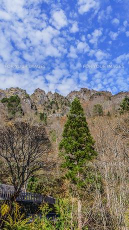 秋の戸隠神社奥社から見た戸隠山の風景の写真素材 [FYI01200335]