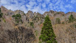 秋の戸隠神社億社から見た戸隠山の風景の写真素材 [FYI01200336]