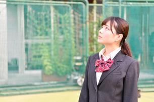 校庭に佇む女子校生の写真素材 [FYI01200347]