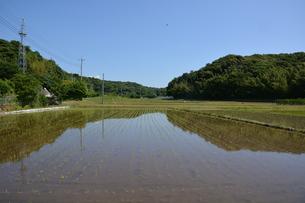 日本の風景 稲田 ・ どこからか聞こえ来る田植え唄 早苗月の写真素材 [FYI01200482]