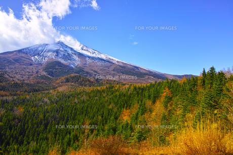 紅葉シーズンの富士山の写真素材 [FYI01200890]