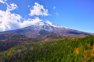 紅葉シーズンの富士山の写真素材 [FYI01200891]