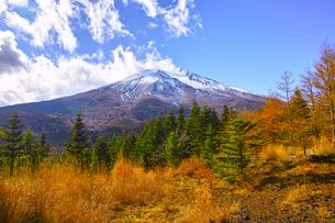 紅葉シーズンの富士山の写真素材 [FYI01200893]
