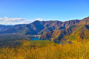 紅葉シーズンの三湖台から西日を受けた西湖と樹海の風景の写真素材 [FYI01200921]