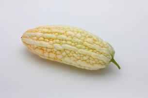 白いゴーヤ ニガウリの写真素材 [FYI01201045]