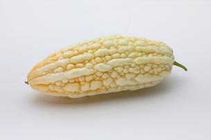 白いゴーヤ ニガウリの写真素材 [FYI01201046]