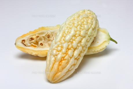 白いゴーヤ ニガウリの写真素材 [FYI01201050]