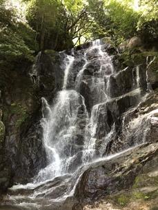 滝の写真素材 [FYI01201201]