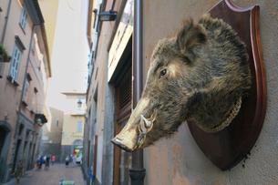 イタリア オルヴィエートの街並みの写真素材 [FYI01201207]