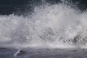 ビーチ ・ 波音の調べ 心に響く…の写真素材 [FYI01201428]