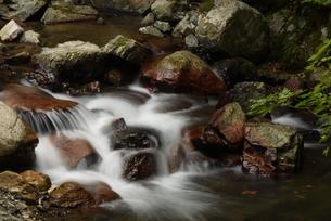 箕面川の人面岩の写真素材 [FYI01201525]
