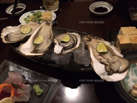 生牡蠣の写真素材 [FYI01201677]