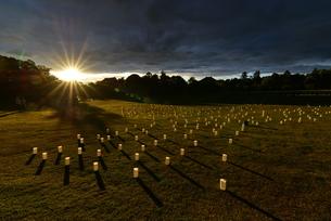 奈良の灯篭まつり,奈良燈花会(ならとうかえ)の写真素材 [FYI01201801]