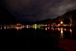 奈良の灯篭まつり,奈良燈花会(ならとうかえ)の写真素材 [FYI01201848]
