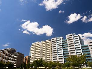 幕張の高層マンション街の写真素材 [FYI01201980]