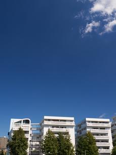 幕張の高層マンション街の写真素材 [FYI01201987]