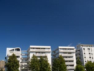 幕張の高層マンション街の写真素材 [FYI01201988]