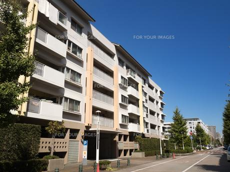 幕張の高層マンション街の写真素材 [FYI01201989]