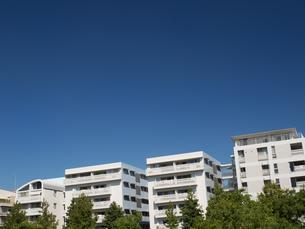 幕張の高層マンション街の写真素材 [FYI01201990]