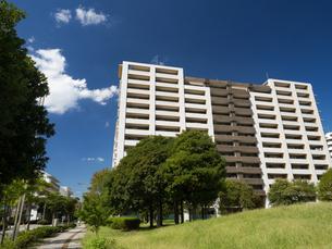 幕張の高層マンション街の写真素材 [FYI01201993]