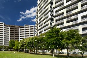 幕張の高層マンション街の写真素材 [FYI01202001]
