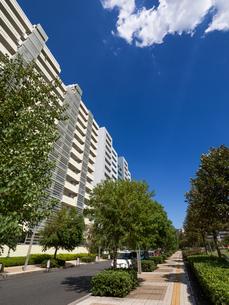 幕張の高層マンション街の写真素材 [FYI01202011]