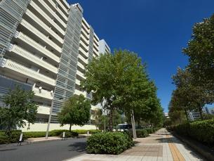幕張の高層マンション街の写真素材 [FYI01202014]