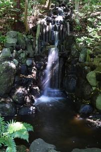 小さな滝 ・ 公園の小さなオアシスの写真素材 [FYI01202127]
