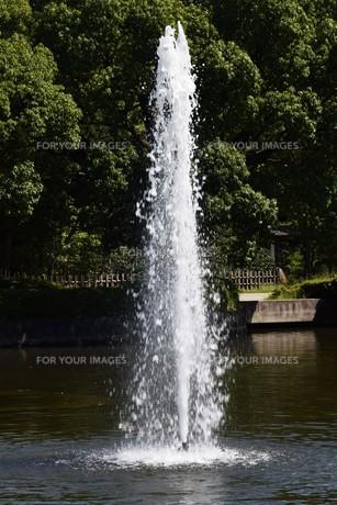 公園の噴水の写真素材 [FYI01202226]