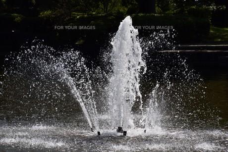 公園の噴水の写真素材 [FYI01202228]