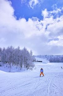 ゲレンデを滑走する初心者スキーヤーの写真素材 [FYI01202253]