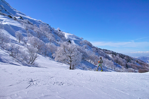 ゲレンデを滑走する前のスキーヤーの写真素材 [FYI01202268]