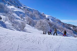 ゲレンデを滑走する前のスキーヤー達の写真素材 [FYI01202269]