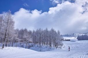 ゲレンデを滑走するスノーボーダーの写真素材 [FYI01202477]