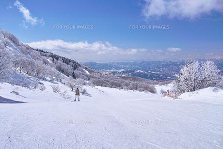 ゲレンデを滑走するスノーボーダーの写真素材 [FYI01202482]