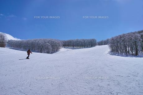 ゲレンデを滑走するスノーボーダーの写真素材 [FYI01202489]