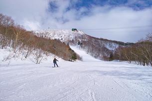 ゲレンデを滑走するスノーボーダーの写真素材 [FYI01202490]