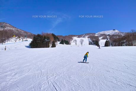 ゲレンデを滑走するスノーボーダーの写真素材 [FYI01202498]