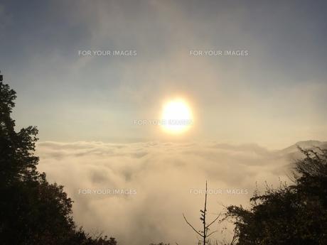 雲海と太陽の写真素材 [FYI01202683]