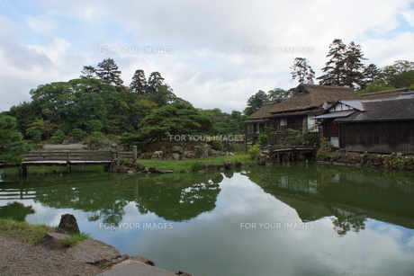 彦根城玄宮園の写真素材 [FYI01202807]