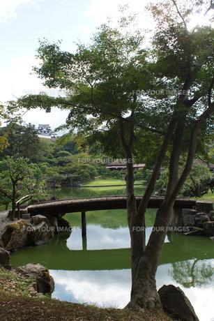 彦根城玄宮園の写真素材 [FYI01202819]